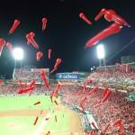 カープ赤傘2
